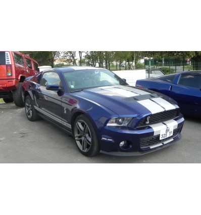 Shelby GT500 - 2010